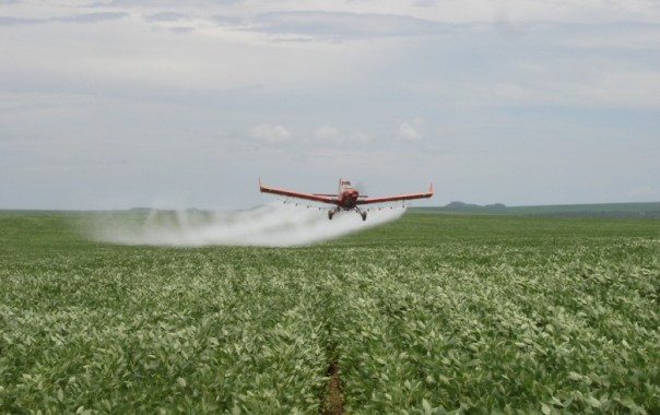 agroquimicos_329615